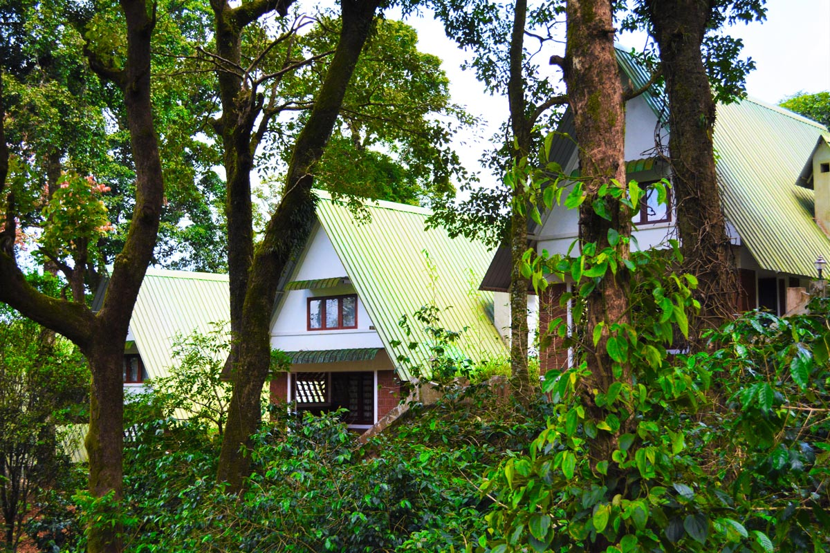 Book Best Resort In Coorg And Enjoy The Misty Woods Facilities