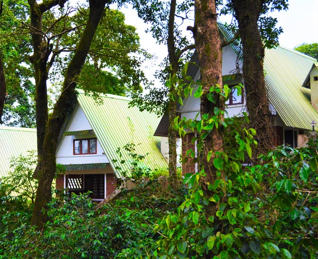 Misty Woods Resort | Fairy Tale Cottages | Cottage Exterior View