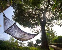 Misty Woods Resort | Image Gallery | Hammock