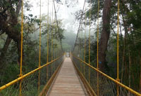 Nisargadhama | Coorg Sightseeing Tourist Attractions